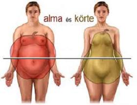 Mellbimbó zsírégető - Muscle and Fitness testépítő és fitnesz magazin